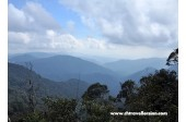 View From Gunung Brinchang